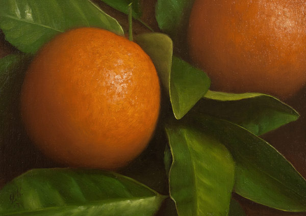 Jonathan Koch - Oranges with Leaves
