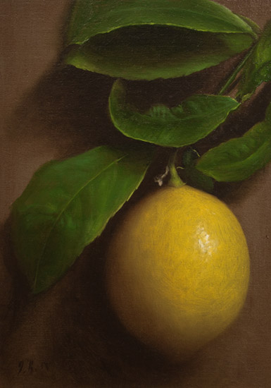 Jonathan Koch - Stem and Leaf Meyer Lemon