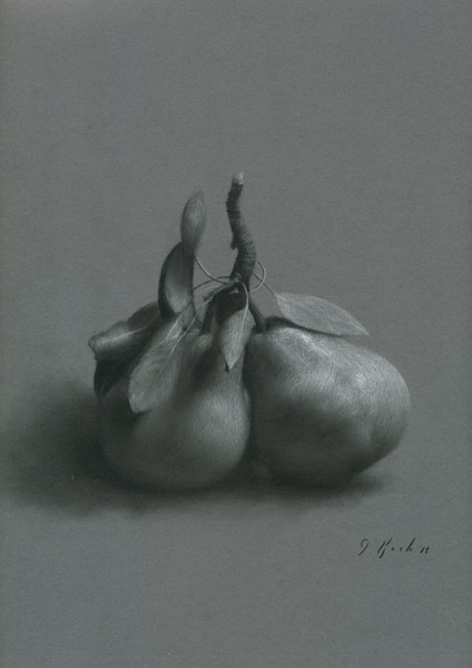 Jonathan Koch - Study of Two Pears